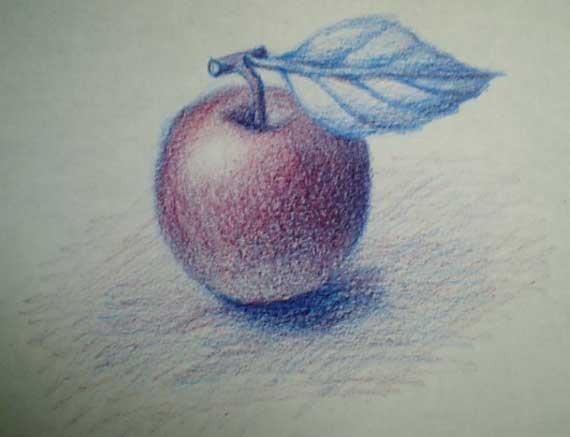 色鉛筆3本で描く ③