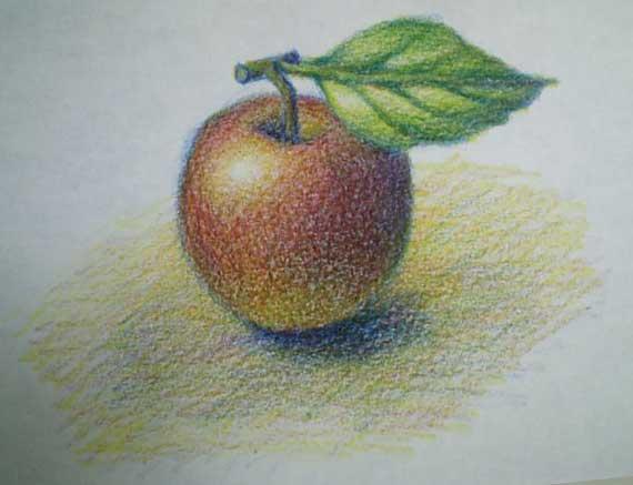 色鉛筆3本で描く ④